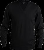 Ali Mens pullover